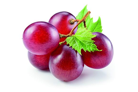Druivenpitextract (OPC)